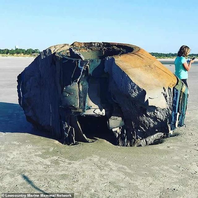 美國南卡羅來納州海灘現類似UFO的神秘物體殘骸 - 每日頭條