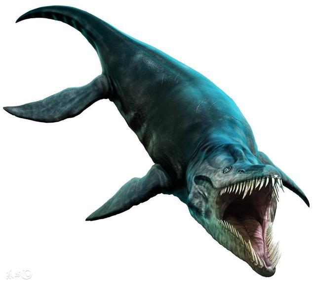 遠古時期的巨型海洋生物。鯊魚什麼的都不值一提 - 每日頭條