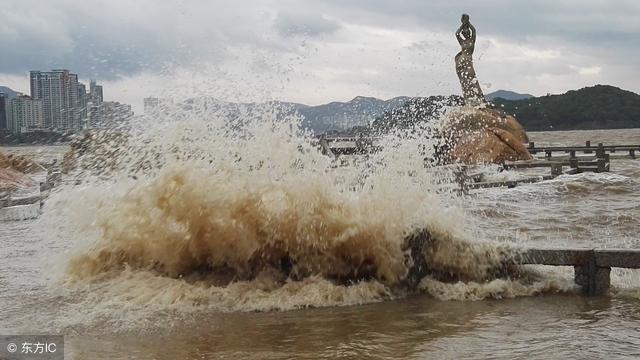 颱風「山竹」和他們比起來真的是弱爆了!這才是真正的「大菠蘿」 - 每日頭條