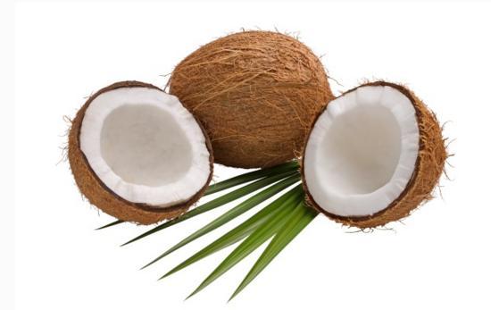 你知道椰子的功效有幾種嗎 - 每日頭條