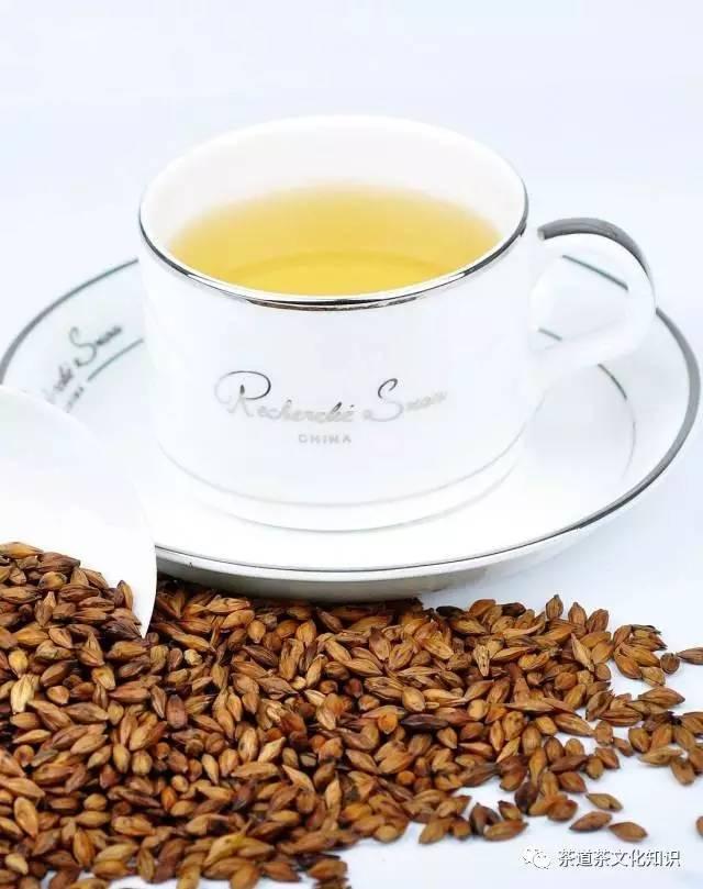 茶友解析:大麥茶 - 每日頭條