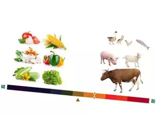 食物的酸鹼度能影響體液的pH嗎 - 每日頭條
