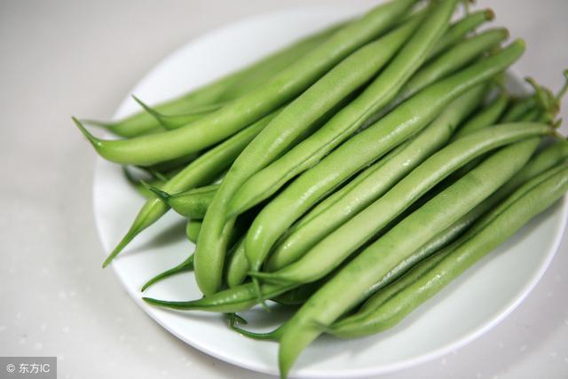 今天四季豆多少錢一斤?2018年四季豆價格行情信息及市場前景分析 - 每日頭條