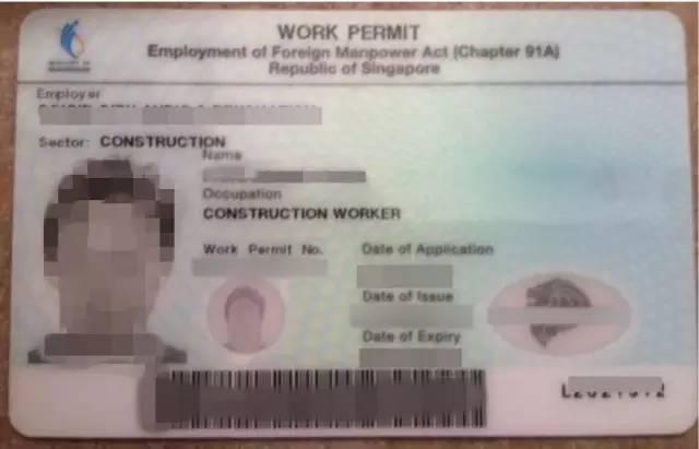僱主為員工申請工作準證謊報工資。新加坡一查到底! - 每日頭條