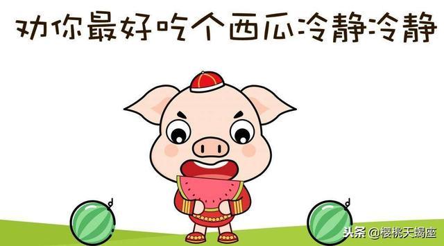 音頻 李居明詳解2019豬年生肖豬與鼠的運程與禁忌…… - 每日頭條