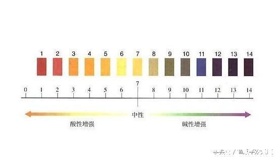 鍾愛6和8?那是因為中國人不懂7 - 每日頭條