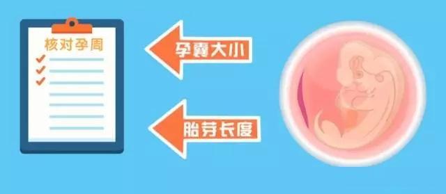 「孕周怎麼算」?最準的孕周計算表請拿好! - 每日頭條
