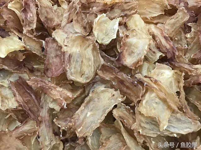魚膠花膠有多少品種 魚膠種類大全 值得收藏 - 每日頭條