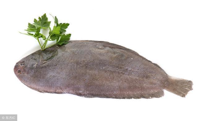 哪些魚刺少、適合小孩子吃? - 每日頭條