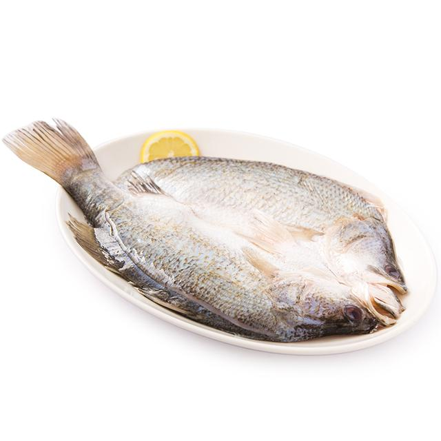愛吃魚的寶貝聰明!到底哪些魚適合寶寶吃呢? - 每日頭條