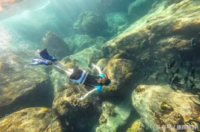 冷門推薦,全球10大最適合潛水的旅遊目的地,假期相約去潛水吧 - 每日頭條