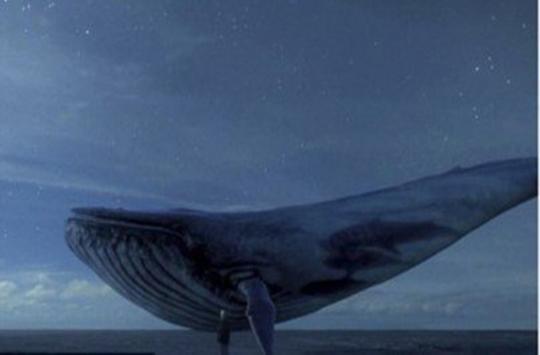 「藍鯨」遊戲里的秘密,你知道多少 - 每日頭條