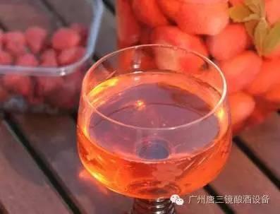 簡單實用的水果酒製作方法 - 每日頭條