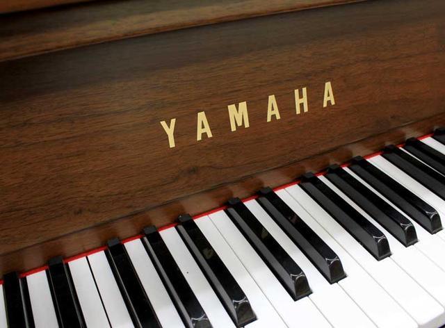鋼琴及電鋼琴品牌有哪些?買鋼琴還是電鋼琴?如何挑選合適的琴? - 每日頭條