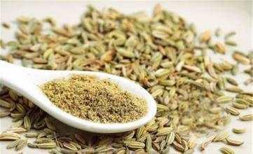 茴香營養及功效 - 每日頭條