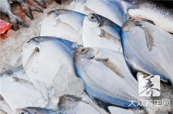 魚不能和什麼一起吃。原來有這些禁忌 - 每日頭條