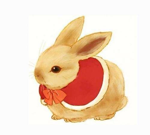 為屬兔人轉發祈福,「文殊九宮八卦風水圖」化解今年太歲霉運! - 每日頭條