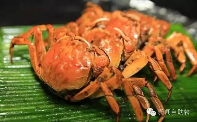 秋風起。蟹腳癢。這些螃蟹你吃過幾種? - 每日頭條