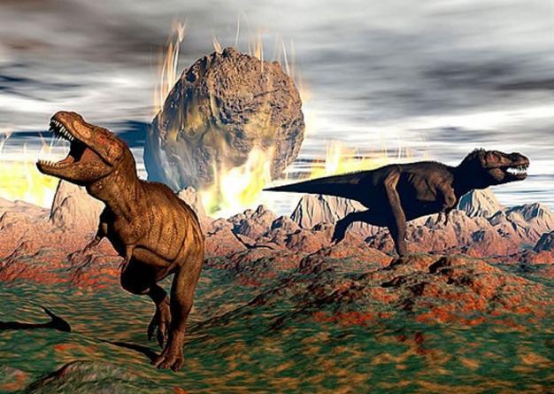 你知道下次物種大滅絕什麼時候發生嗎?真相讓人大吃一驚! - 每日頭條