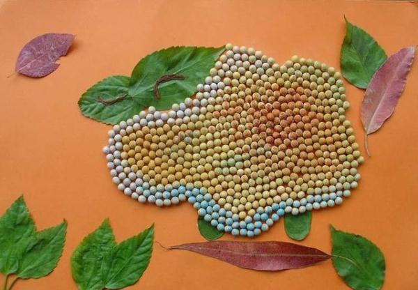 一組很美的種子粘貼畫。小學、幼兒園的孩子可以參考 - 每日頭條