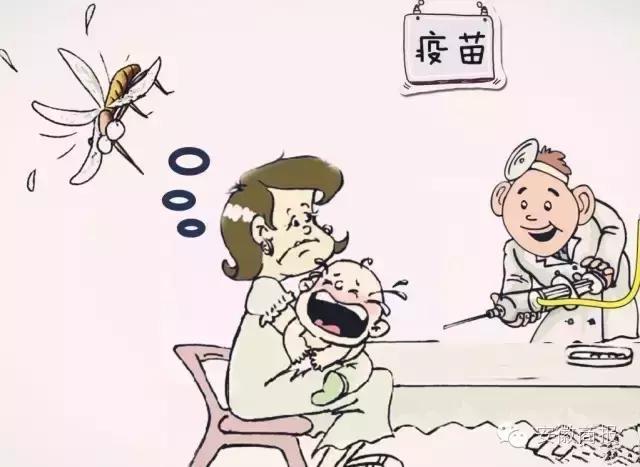 注意|蚊子帶著傳染病來了 - 每日頭條