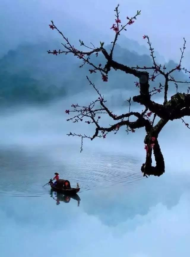 儒者的七大智慧 - 每日頭條
