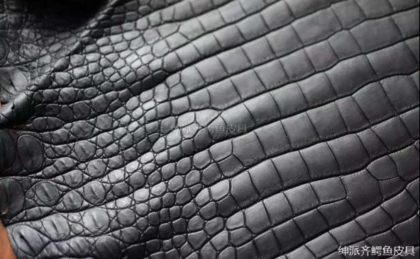 鱷魚皮最基本最詳細的知識大全 紳派齊科普 - 每日頭條