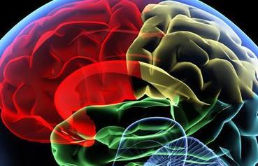 老年腦萎縮在早期有什麼特殊信號提示 - 每日頭條