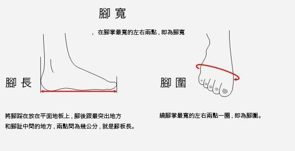 乾貨!如何確定你該穿什麼尺碼的跑鞋? - 每日頭條