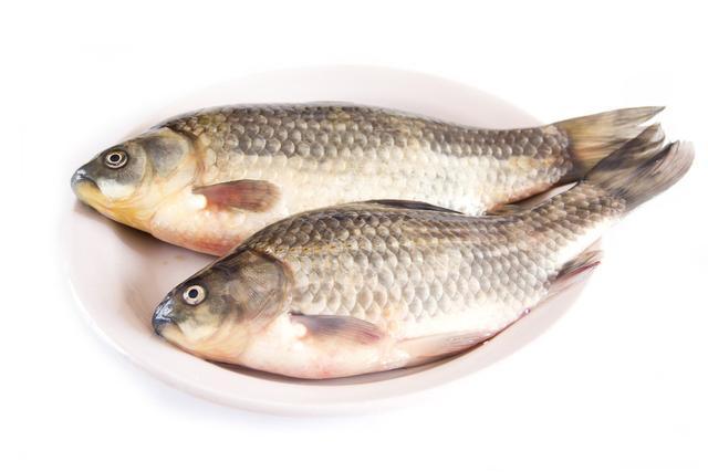 冬天適合吃什麼魚 7種魚最肥美 - 每日頭條