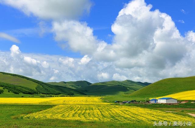 8月的呼倫貝爾大草原美景如畫 線路推薦+遊玩攻略 - 每日頭條