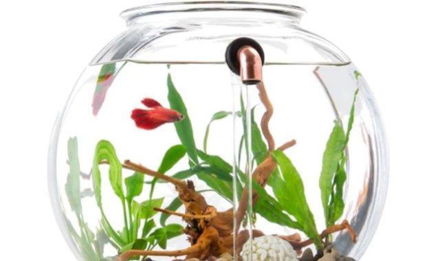 自動換水的魚缸|設計 - 每日頭條
