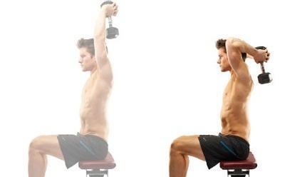 肱三頭肌鍛煉方法之坐姿頸後臂屈伸 - 每日頭條