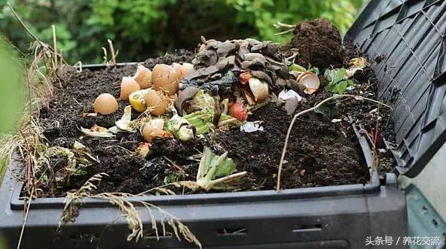 kitchen compost container plastic cabinets 掌握堆肥的材料挑选注意事项 轻松得到健康的肥土 每日头条 堆肥可以选择各种容器 你也可以挑选一些垃圾桶 水桶或其他的塑料容器 堆肥的容器底部一定要穿孔 避免堆肥材料堵塞排水孔 排水孔的位置可以铺上一层细小的纱网