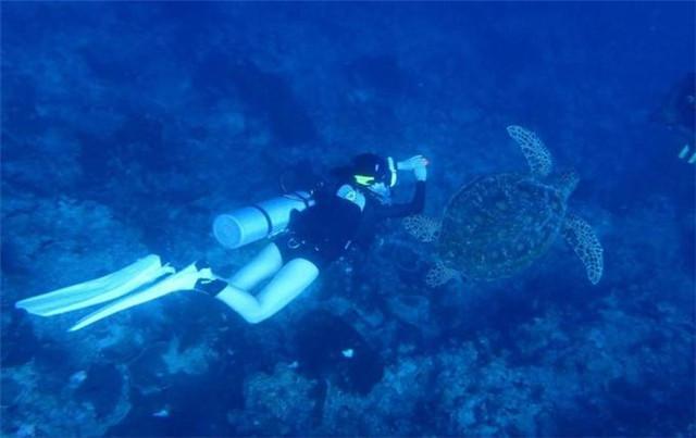 往下潛!神遊海底是人們由來已久的願望~宿務三島潛水課程開班! - 每日頭條