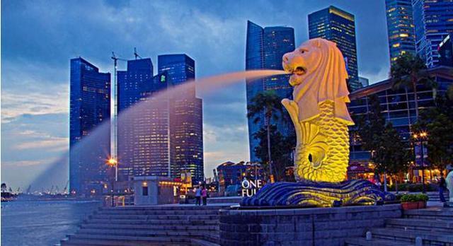新加坡做可溶性支架的費用到底多少錢 - 每日頭條