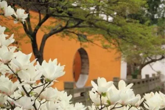 25句古詩詞就能游遍最美中國?你沒看錯! - 每日頭條