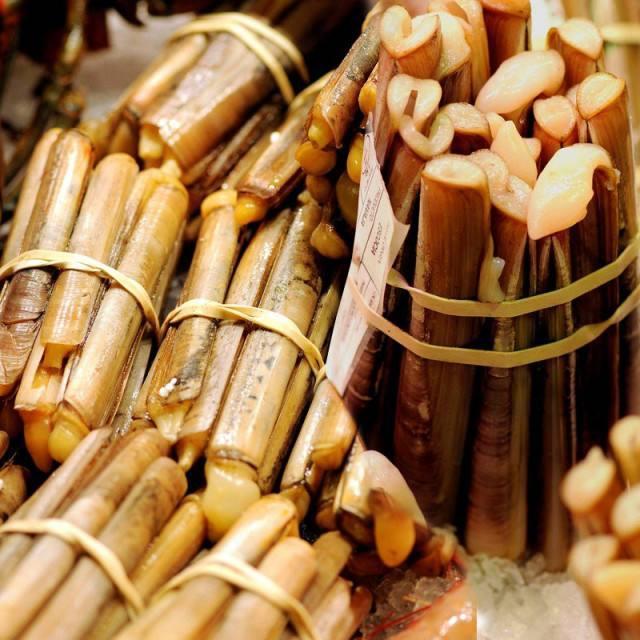 萊州特產之萊州大竹蟶又叫蟶子 - 每日頭條