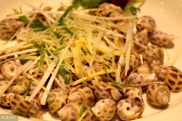花螺一般煮多久,怎樣看熟了沒 - 每日頭條