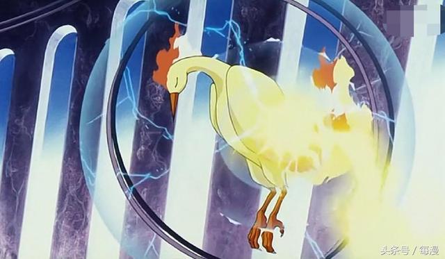 火系神獸神奇寶貝有9隻,小智出門就遇到鳳王,固拉多被取笑 - 每日頭條