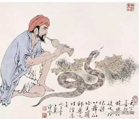 屬蛇 2017本命年生肖運程精準預測 - 每日頭條
