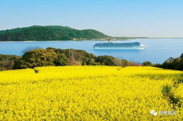 福岡出行當日往返就能high翻天的地方,居然是…… - 每日頭條