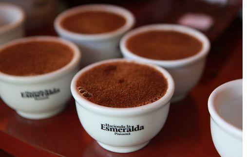 「專題報告」巴拿馬翡翠莊園新產季水洗綠標瑰夏咖啡 - 每日頭條