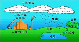 酸雨是怎麼形成的對環境和人們的危害有哪些? - 每日頭條