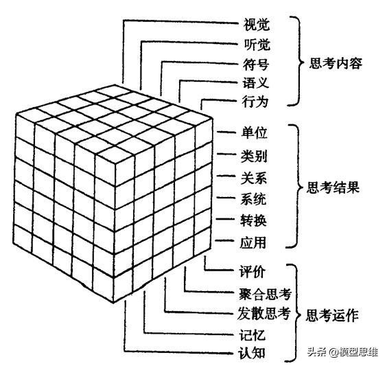 60思維模型:成功智力理論ACP模型一為什麼智商不能決定成功? - 每日頭條