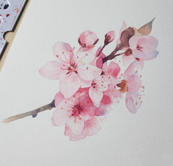 櫻花水彩畫的繪畫教程,收藏學習 - 每日頭條