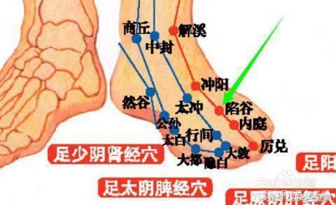 胃——胃不和則寢不安,經絡養生之胃經! - 每日頭條
