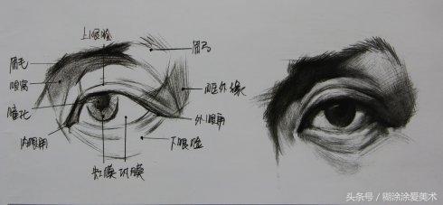 乾貨!人體五官眼睛的素描畫法解析 - 每日頭條