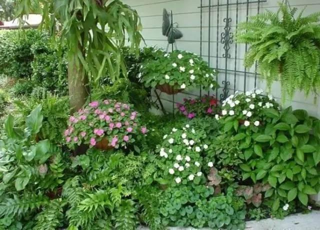 怎樣搭配我們的庭院才美?我選花境! - 每日頭條