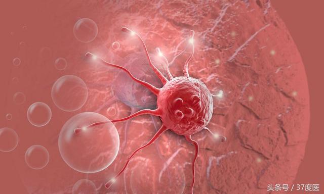 惡性腫瘤癌癥的生長方式 - 每日頭條